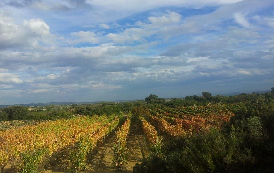 Ruta Verde Cultural de Rioja Alavesa