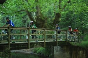 Alava en familia. Recorridos en bicicleta por las rutas verdes de Álava