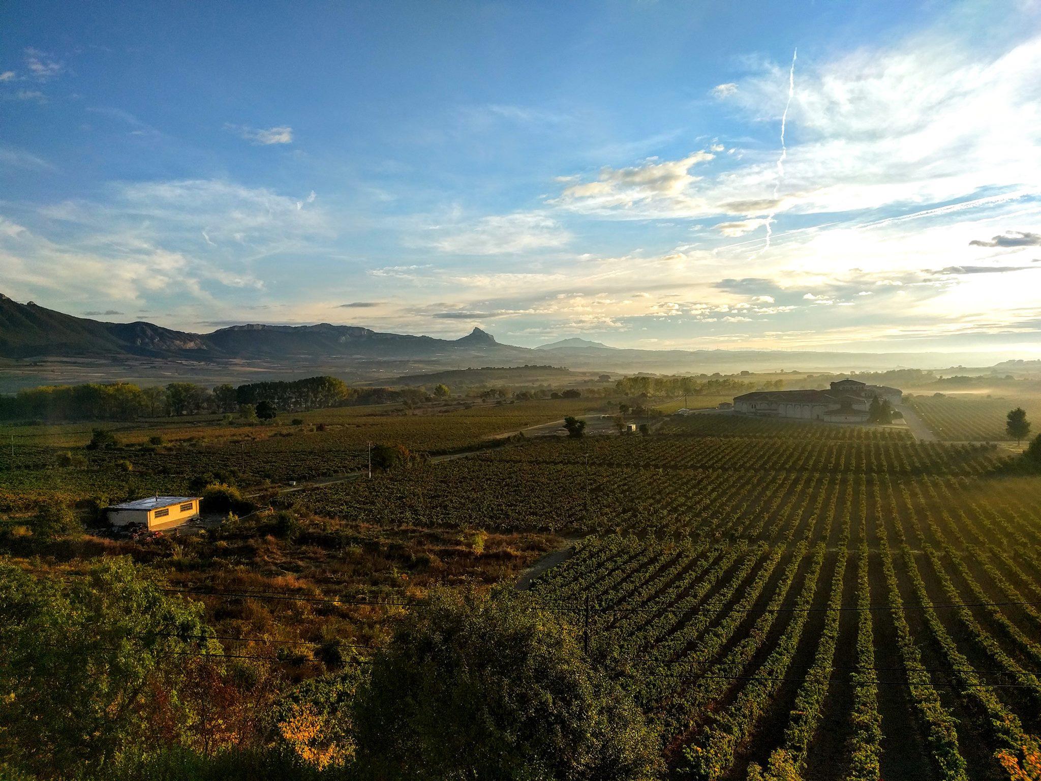 Otoño en Rioja Alavesa (Del 4 al 6 octubre)