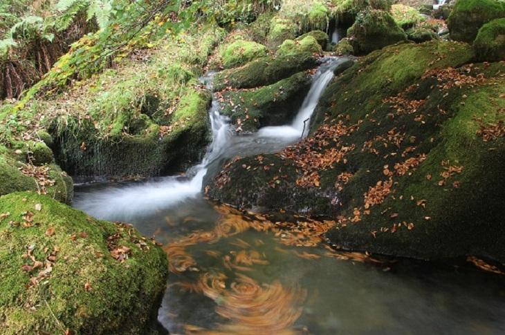 Los parques naturales de Álava presentan una agenda de visitas guiadas en julio para toda la familia